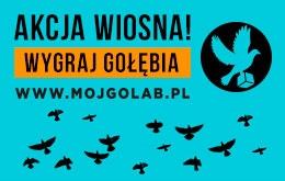 Sklep z produktami dla go��bi - Mojgolab.pl